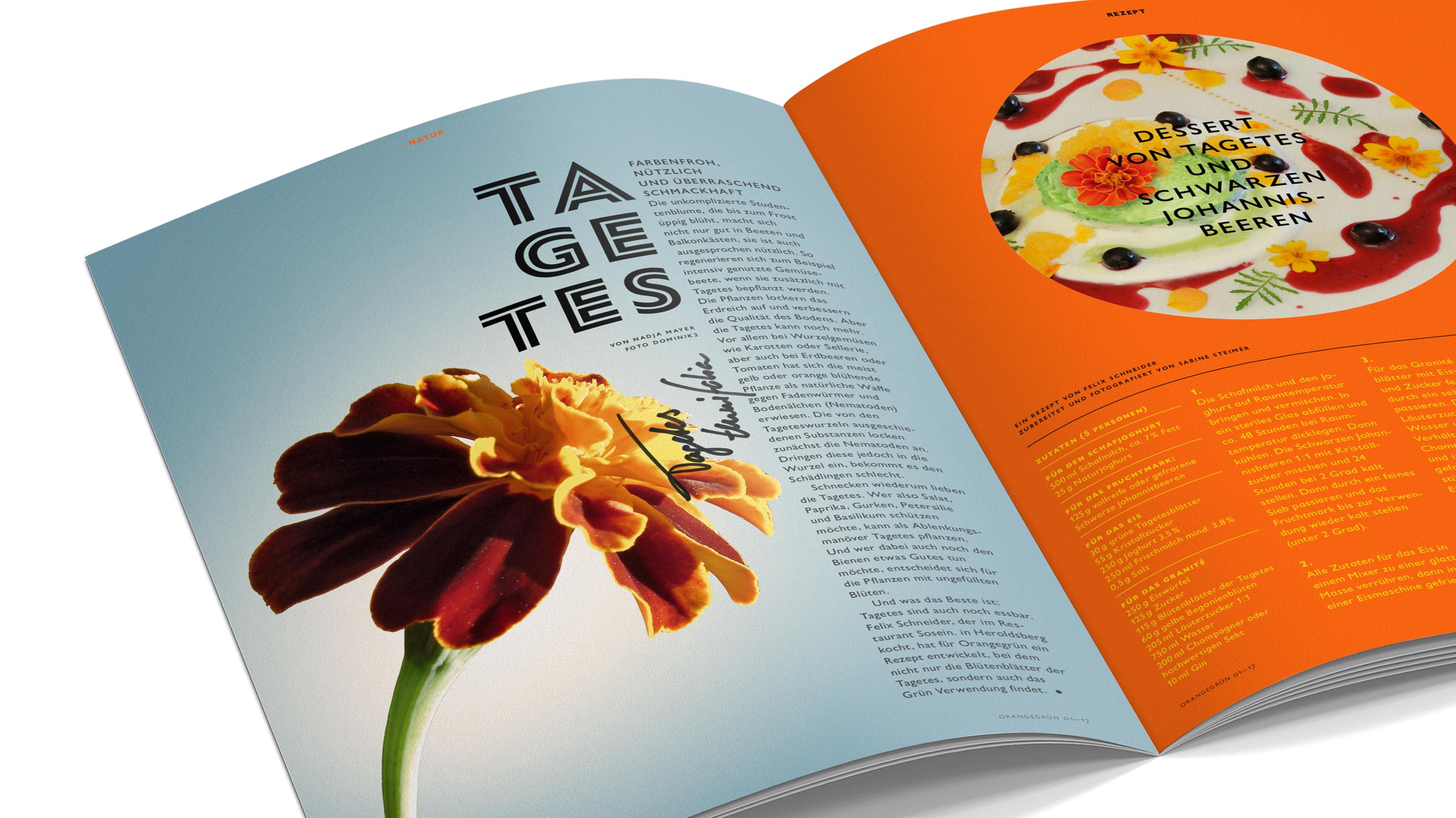Orangegrün Cover – Poarangan Brand Design2