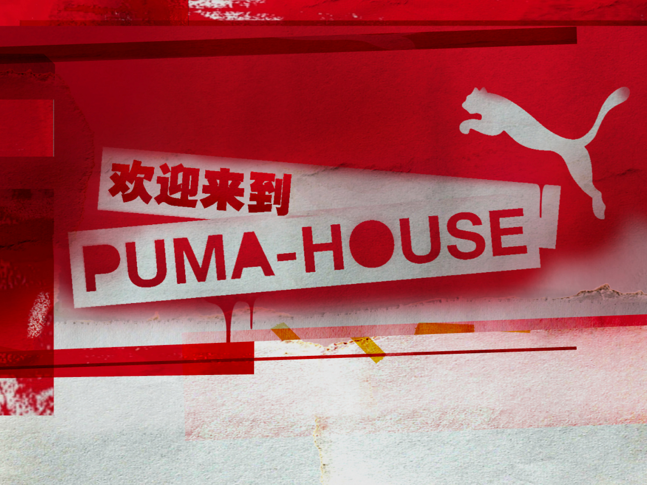 Puma House