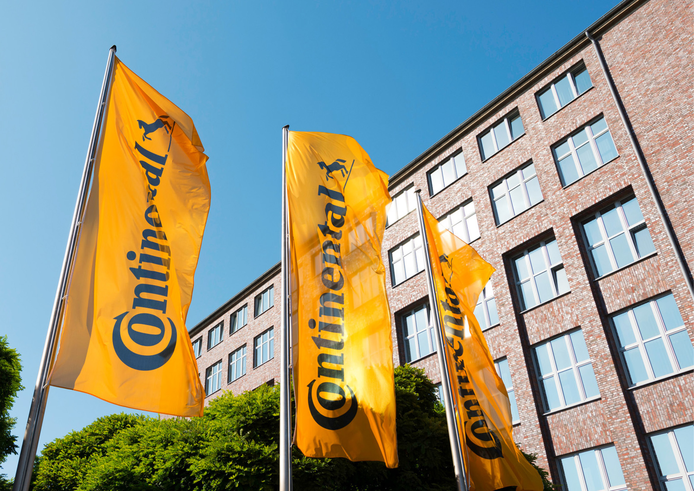 Continental Fahnen – Poarangan Brand Design2